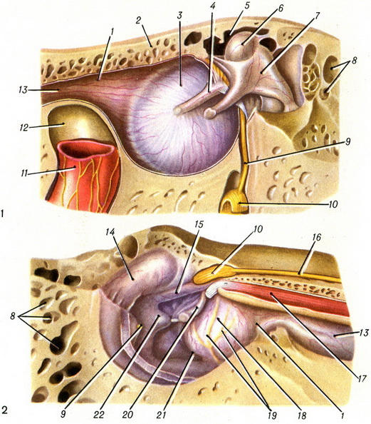 Трубка Для Вентиляции Среднего Уха фото