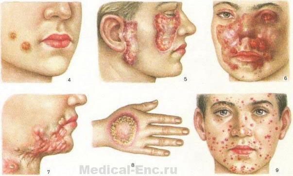""""""",""""www.medical-enc.ru"""