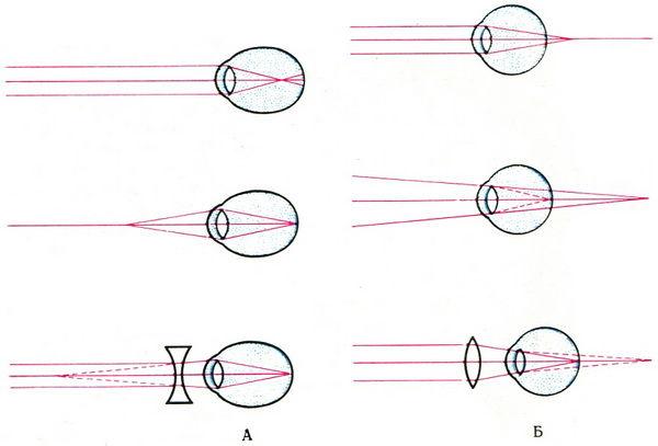 Схема хода светового пучка