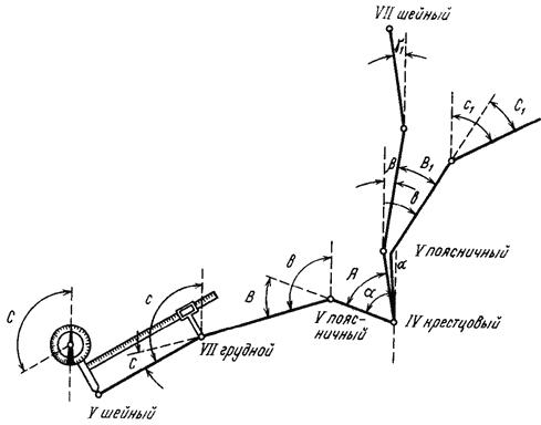 Гониометрия тазобедренного сустава что такое лангета плечевого сустава в картинках